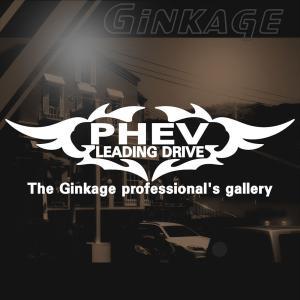 MITSUBISHI 三菱 アウトランダー PHEV かっこいい 車 ステッカー オリジナル メーカー ロゴ エンブレム ステッカー リアガラス用 ginkage