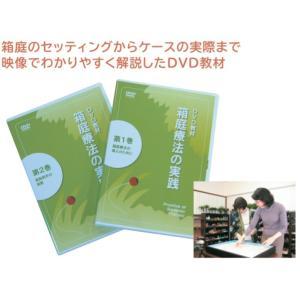 箱庭療法の実践(1巻・2巻組) DVD|ginnnenndo
