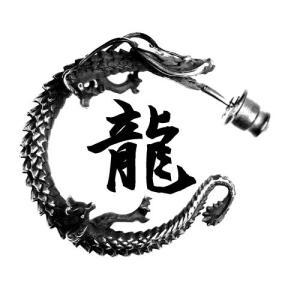 シルバーピアス メンズ 龍 ryu ドラゴン ブランド メンズ ピアス シルバー|ginnokura