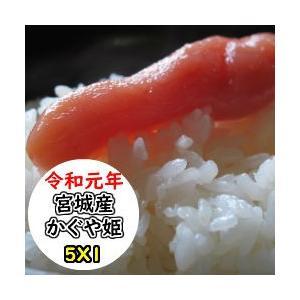 米 5Kg 宮城県東松島産かぐや姫 精米 送料無料 平成29年産  数量限定のプレミアム米|ginshari