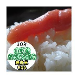 米 20kg 無洗米 乾式無洗米 山形産あきたこまち 送料無料 平成29年産|ginshari