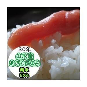 米  20kg 精米 山形産あきたこまち 送料無料 平成29年産|ginshari