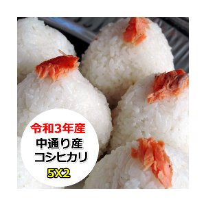 米 10kg 無洗米 乾式無洗米 福島中通り産コシヒカリ 送料無料 平成29年産 1等米 お米|ginshari