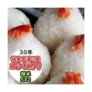米 10kg 精米 福島中通り産コシヒカリ 送料無料 平成29年産  1等米 お米|ginshari