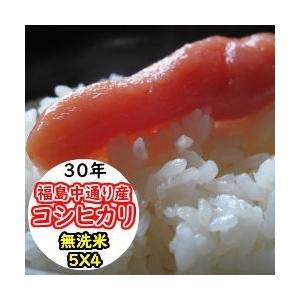 米 20kg 無洗米 乾式無洗米 福島中通り産コシヒカリ 送料無料 平成29年産 1等米 お米|ginshari