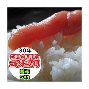 米 20kg 精米 福島中通り産コシヒカリ 送料無料 平成29年産 1等米 お米|ginshari
