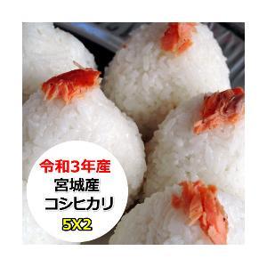 新米 米 10kg 宮城産コシヒカリ 無洗米 乾式無洗米 送料無料 平成30年産|ginshari