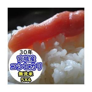 新米 米 20kg 宮城産コシヒカリ  無洗米 乾式無洗米 送料無料 平成30年産|ginshari