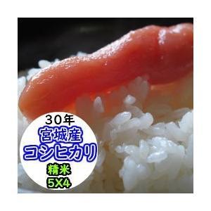 新米 米 20kg 宮城産コシヒカリ 精米 送料無料 平成30年産|ginshari