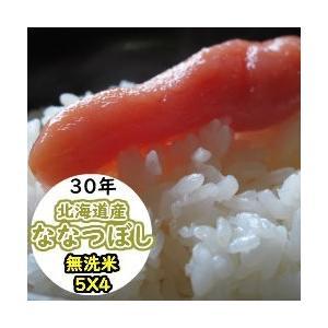 米 20kg 無洗米 乾式無洗米 北海道産 ななつぼし 送料無料 平成29年産|ginshari