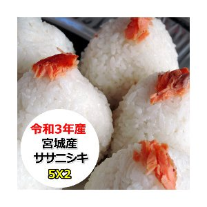 米 10kg 宮城産ササニシキ  無洗米 乾式無洗米 送料無料 平成29年産|ginshari