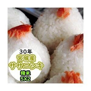 お米 米 10kg 宮城産ササニシキ 精米 送料無料 平成30年産|ginshari