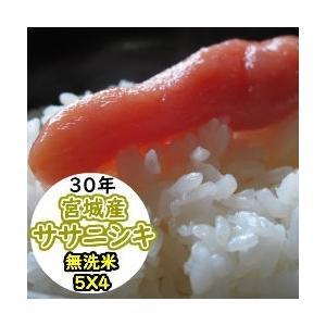 米 20kg 宮城産ササニシキ 無洗米 乾式無洗米 送料無料 平成29年産|ginshari