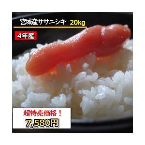 米 20kg お米 宮城産ササニシキ 玄米 送料無料 平成29年産  1等米 選べる精米|ginshari