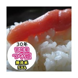 新米 米 20kg 宮城産つや姫 無洗米 乾式無洗米 送料無料 平成30年産|ginshari