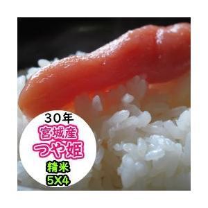 新米 米 20kg 宮城産つや姫 精米 送料無料 平成30年産|ginshari