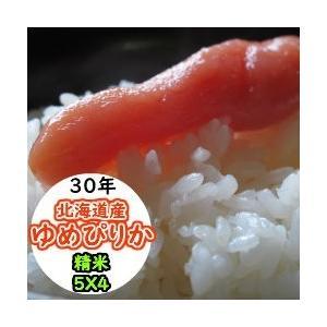 米 20kg 北海道産ゆめぴりか 精米 送料無料 平成29年産|ginshari