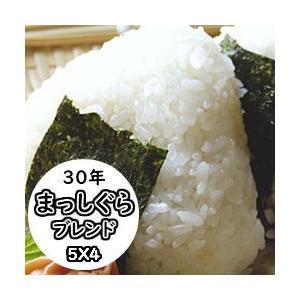 米 20kg 青森産まっしぐらブレンド 送料無料 平成29年産 ブレンド米|ginshari