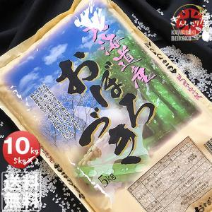 米 10kg 5kg×2袋セット お米 おぼろづ...の商品画像