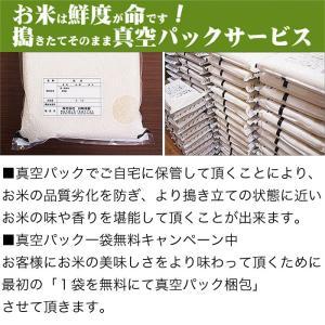 米 10kg 5kg×2袋セット お米 おぼろ...の詳細画像3