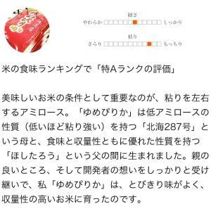29年産 北海道産 ゆめぴりか 10kg (5kg×2袋セット) 白米 送料無料|ginsyariya|03