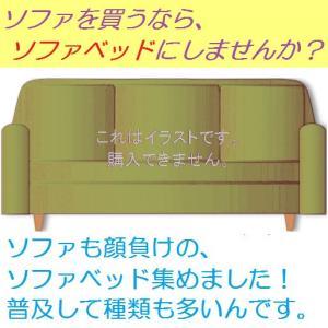 このページは、『ソファベッド』のページを紹介するためのページです。ここでは商品は購入いただけません。...