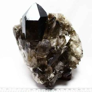 3.6Kg ブラジル産  モリオン 純天然 黒水晶 クラスター t143-540|ginza-todo