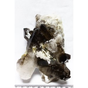 ブラジル産  モリオン 純天然 黒水晶 クラスター t143-553|ginza-todo