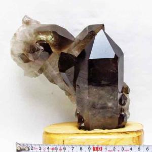 1.7Kg ブラジル産  モリオン 純天然 黒水晶 クラスター t143-846|ginza-todo