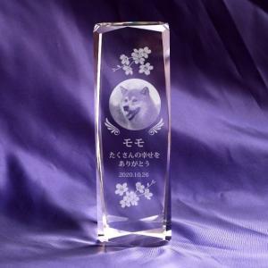 写真彫刻代込み 天使の羽メモリアル スマート150mm ペット位牌 クリスタルガラス|ginzagift