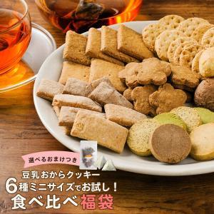 6種×各1袋 食べ比べ  計6袋 おからクッキーミニサイズ おまけ付き   送料無料 豆乳おから クッキー チャック付き お試し メール便A TSG TN|ginzou