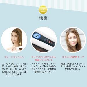 【あすつく】在庫限り 絹女 海外対応ストレートアイロン KINUJO W worldwide model DS100|gion|02