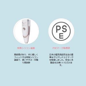 【あすつく】在庫限り 絹女 海外対応ストレートアイロン KINUJO W worldwide model DS100|gion|04