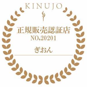 【あすつく】在庫限り 絹女 海外対応ストレートアイロン KINUJO W worldwide model DS100|gion|05