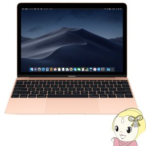 Apple MacBook 12インチRetinaディスプレイ 1200/12 2018年秋モデル ...