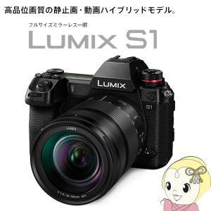 パナソニック ミラーレスカメラ LUMIX DC-S1M 標準ズームSレンズキット/srm gioncard 02
