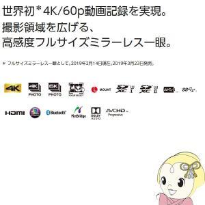 パナソニック ミラーレスカメラ LUMIX DC-S1M 標準ズームSレンズキット/srm gioncard 03
