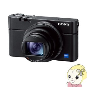 ソニー デジタルカメラ Cyber-shot DSC-RX100M6/srm gioncard