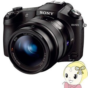 ソニー デジタルカメラ Cyber-shot DSC-RX10M2/srm gioncard
