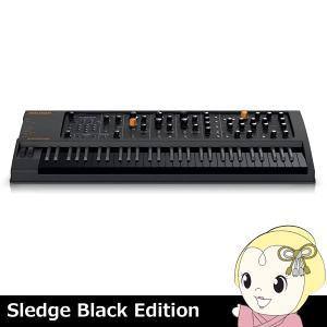 ■SledgeBlackEdit ディリゲント Sledge Black Edition|gioncard