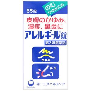 アレルギール錠 55錠|gionsakura