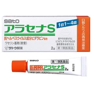 アラセナS 軟膏 2g 口唇ヘルペス薬 市販薬|gionsakura