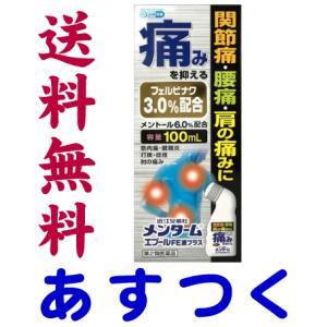 メンターム エプールFE液プラス 100ml|gionsakura