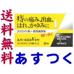 エバージエルV坐剤 30個入(ボラギノールのジェネリック)|gionsakura