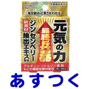 元気の力 3粒×2回分|gionsakura