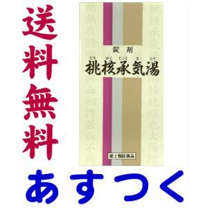 桃核承気湯 1000錠 漢方薬 錠剤(一元製薬)61番|gionsakura