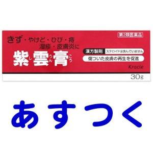 クラシエ紫雲膏 30g|gionsakura