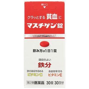 マスチゲン錠 30錠|gionsakura