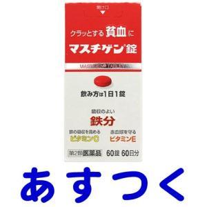 マスチゲン錠 60錠(貧血改善)|gionsakura