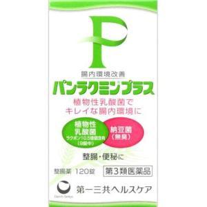 パンラクミンプラス 120錠|gionsakura